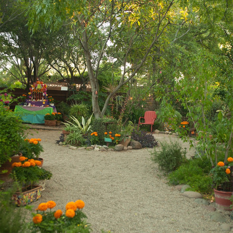Tuscon Botanical