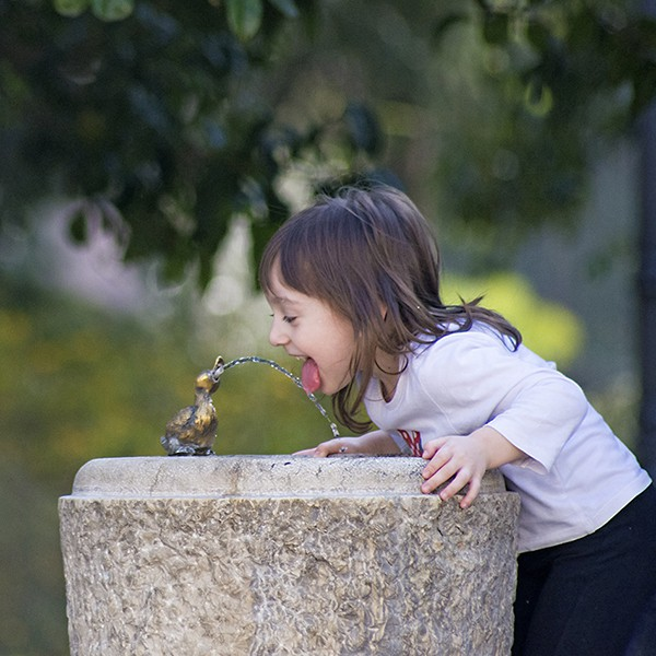 GET TIPS AND TOOLS TO SAVE WATER