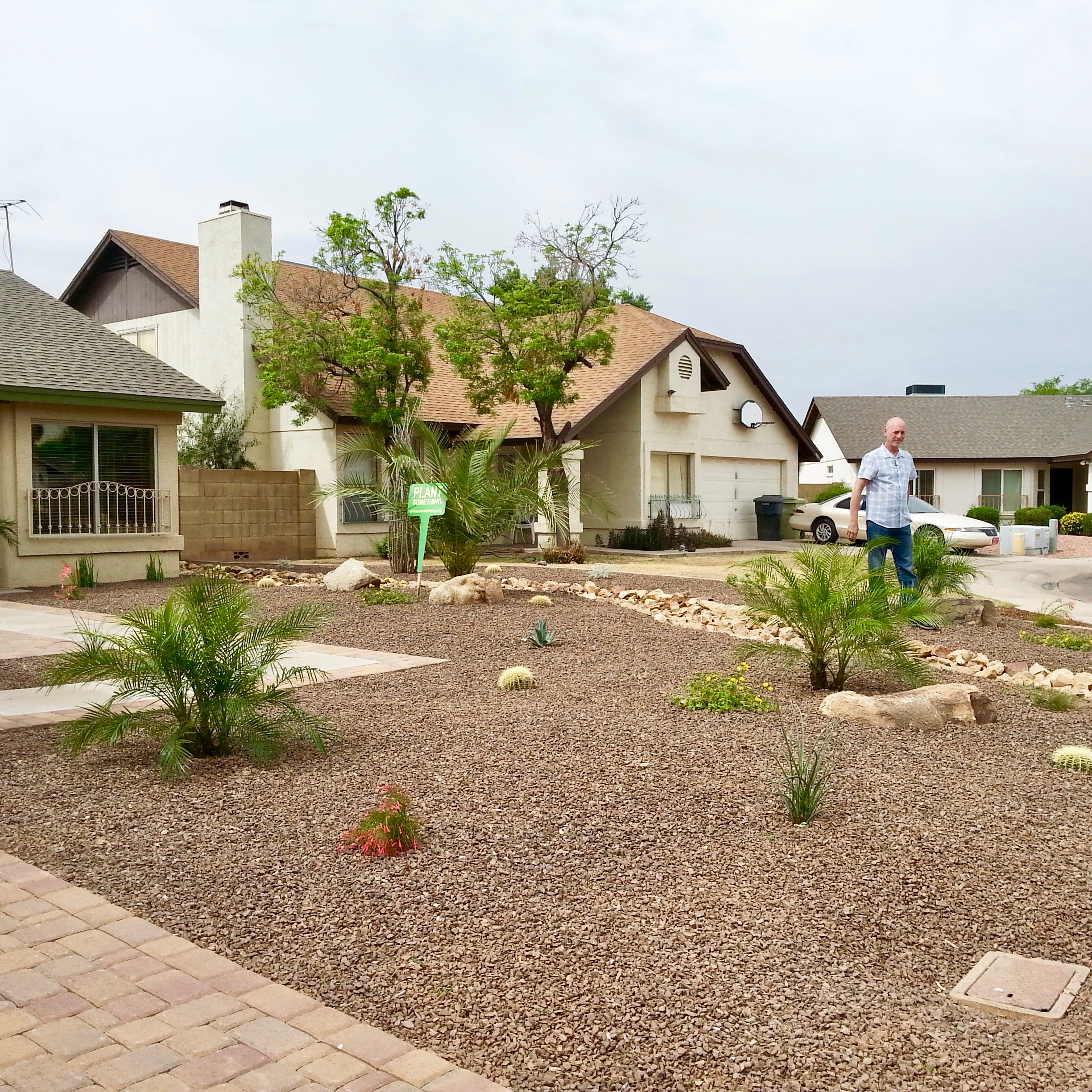 Glendale 100th Acre Converted From Grass To Desert Landscape Amwua