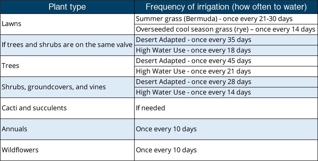 December watering schedule