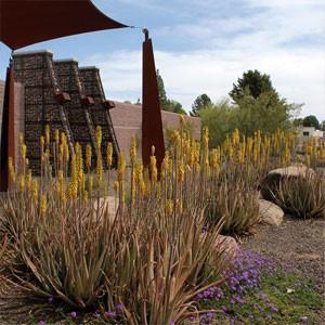 Scottsdale Xeriscape Garden at Chaparral Park