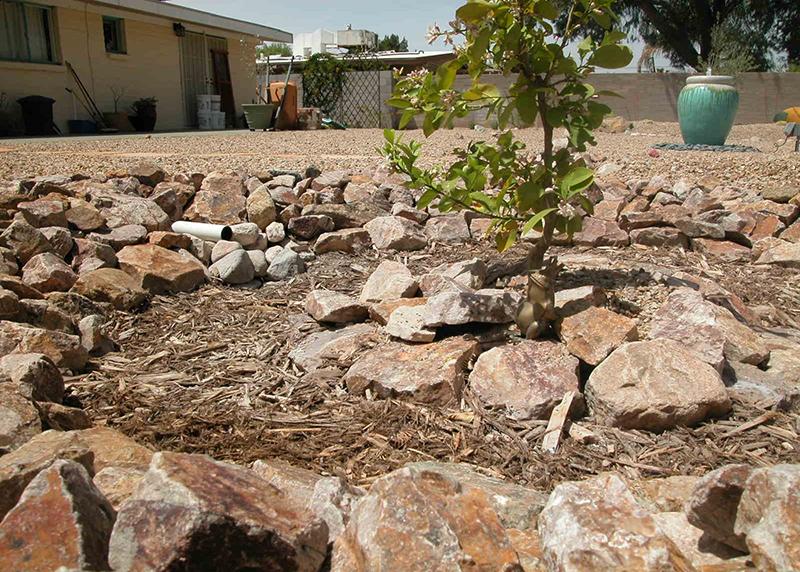2.10 Rainwater Harvesting Tucsonwater